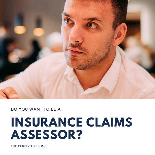 Insurance Claims Assessor Resume Writing Services