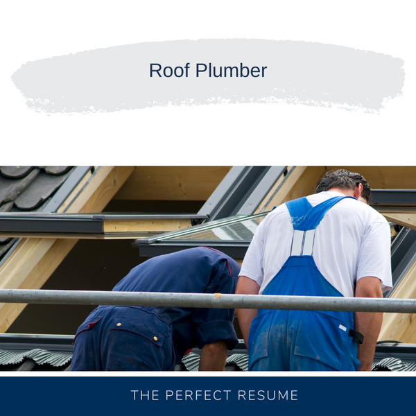 Roof Plumber Resume Writing Services