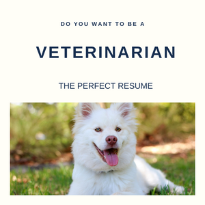 Veterinarian Resume Writing Services
