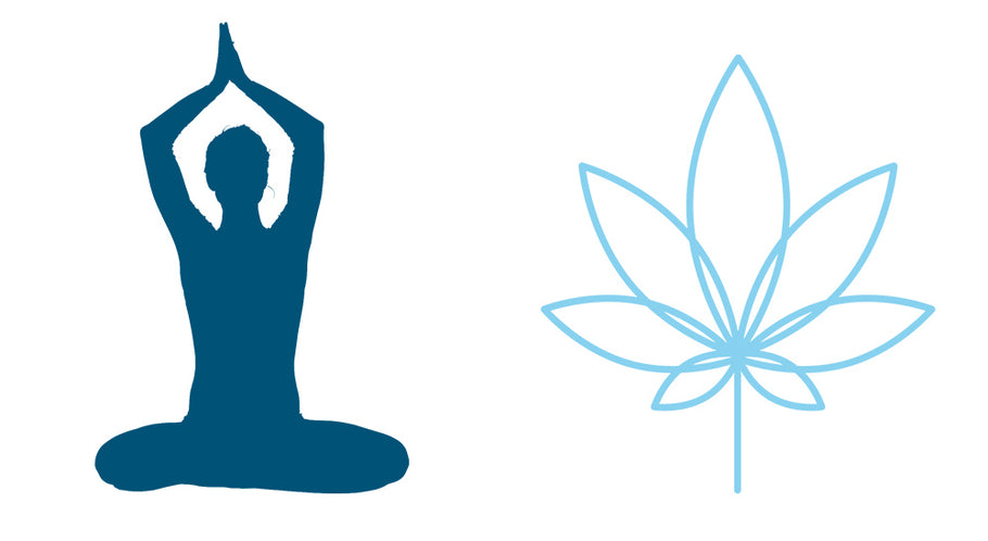 CBD and Yoga- Namaste from ShredCBD