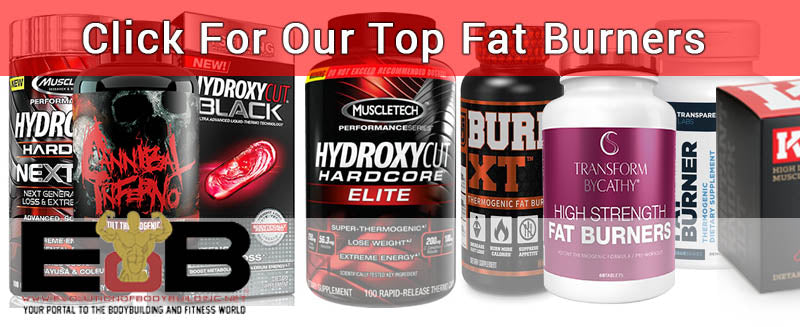 See Our Top Fat Burners