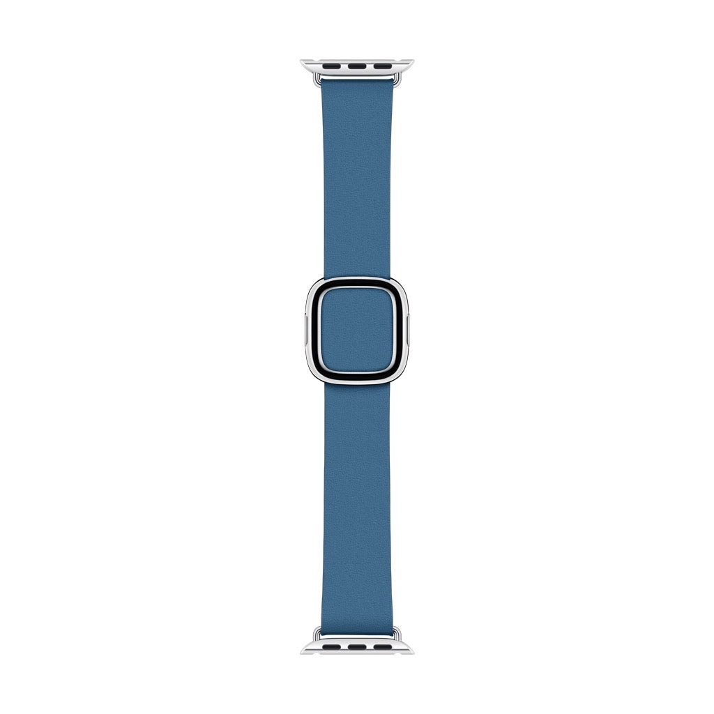 Apple Watch Cape Cod Blue Modern Buckle Band