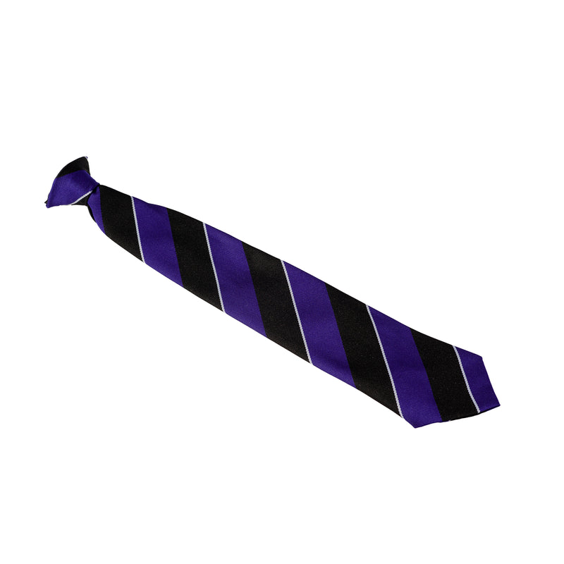 All Saints Catholic College Tie