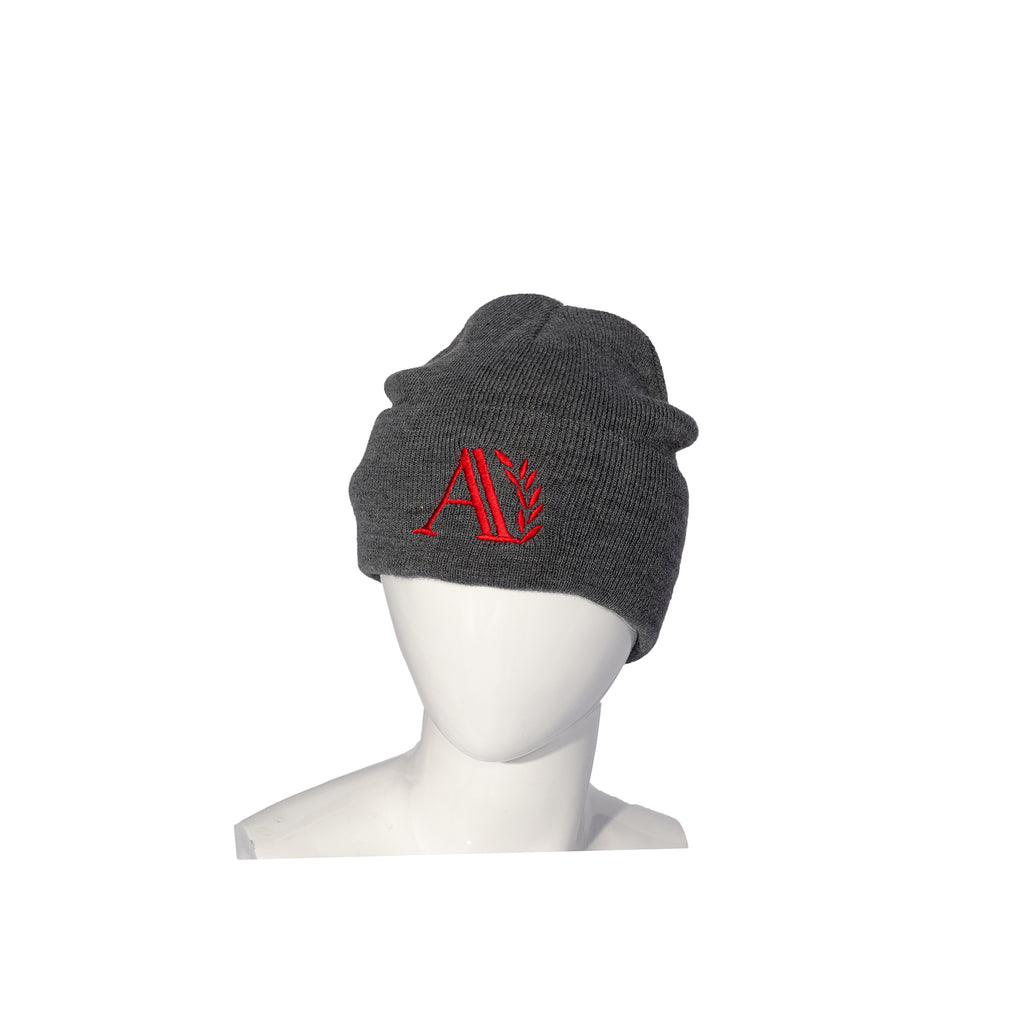 Ark Academy Primary School Ski Hat