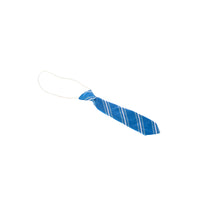 Clifton Lodge School Tie