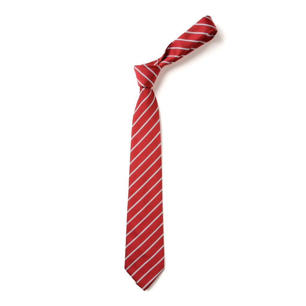Ark Academy Primary School Tie