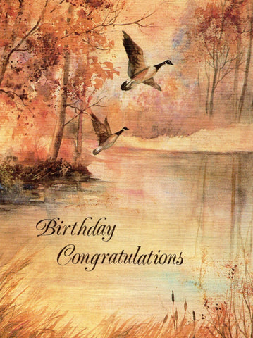 Birthday Congratulations Art Painting Birthday Greeting Card