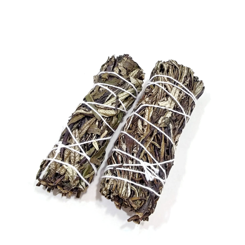 Yerba Santa Smudging Herbs Sticks Spiritual Purification & Medicinal Properties