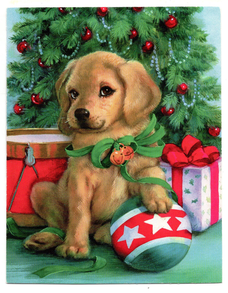 Christmas Dog Mary Christmas Holiday Seasons Greeting Card Dogs lovers