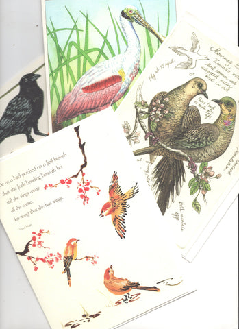 Lot of 4 Trader Joe's Birds Lovers  Blank Greeting Cards