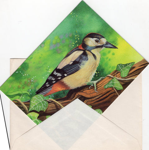 Colorful Bird Birds Lover Collection Blank Art Greeting Card illustrated by Mich