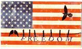US America Flag FREEDOM Greeting Card