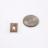 Anti-tamper mini rectangle tag - NTAG213