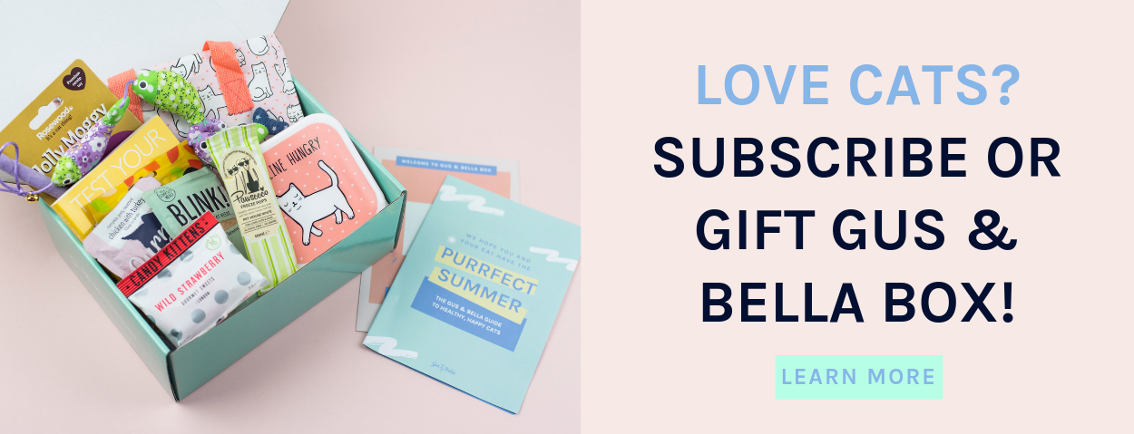 Subscribe or gift Gus and Bella Box