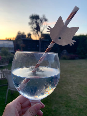 Cat-themed cocktail recipe