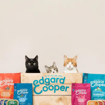 Edgard and Cooper food with cats