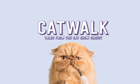 cat walk front cover - netflix