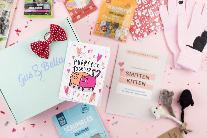 Smitten Kitten themed gus and bella cat subscription box