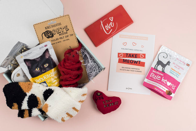 February Take Meowt cat subscription box
