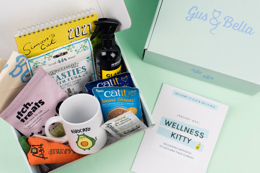 Unboxing Video for Wellness Kitty cat subscription box