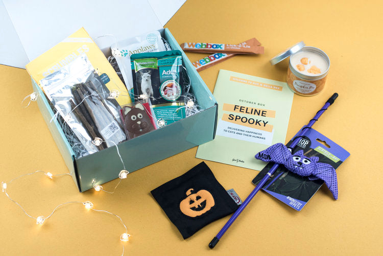Halloween themed cat subscription box from Gus & bella