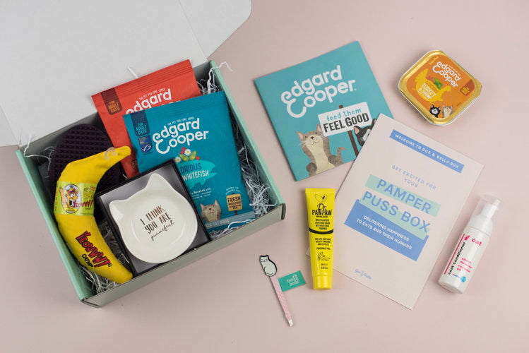 Pamper Puss Gus and Bella Box cat subscription box