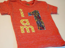 Load image into Gallery viewer, I AM 1 Birthday Tee Organic Shirt Blend boys girls birthday shirt first birthday second etc polka dot numbers