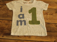Load image into Gallery viewer, I AM 1 Birthday Tee Organic Shirt Blend boys girls birthday shirt first birthday second light blue and green customize birthday theme colors