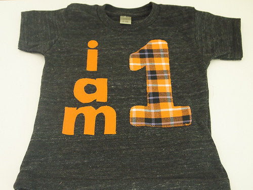 Halloween Birthday Shirt Organic Shirt Blend first birthday second etc orange and black custom birthday tshirt