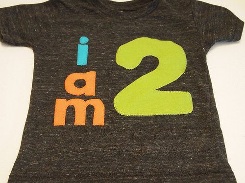 lime orange turquoise birthday Shirt Organic Shirt Blend customize colors boys girls birthday shirt first birthday and up