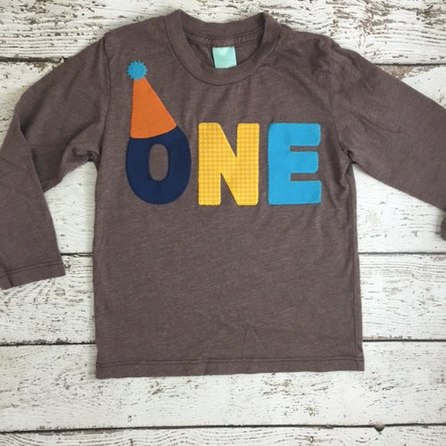 First birthday shirt can be customized for boys or girls any age and colors party hat birthday hat first birthday hat personalized tee kids