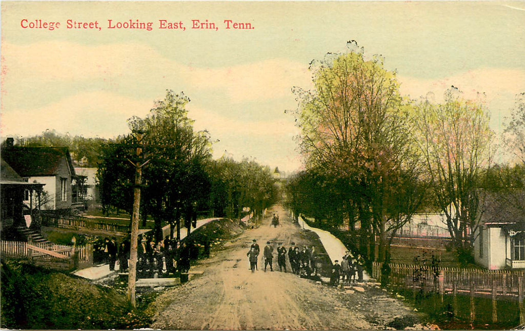 Erin - Tennessee - TN - College Street Looking East - Original Postcard