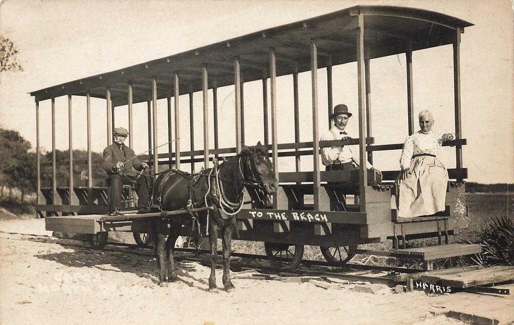 St Augustine Florida FL - Horse Trolley - Crisp Original Real Photograph