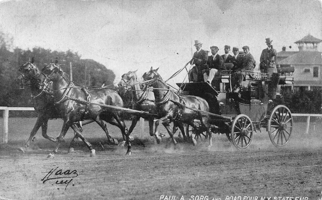 Paul A. Sorg - Show Horses - Stagecoach - Road Four - NY State Fair