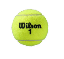 Load image into Gallery viewer, Wilson Roland Garros Official Ball - Clay Court - 4 Ball Can