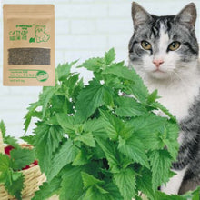 Load image into Gallery viewer, 100% Natural Premium Catnip Cattle Grass In Menthol Flavor