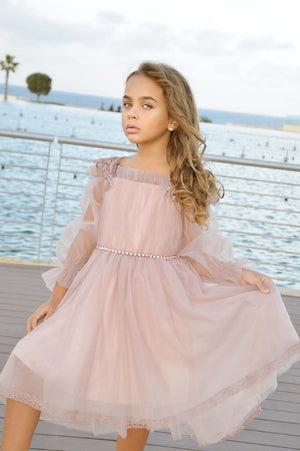 Elegant Pink Dress With Long tulle Sleeve