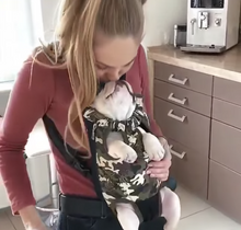 Load image into Gallery viewer, Furry Friend Carrier Backpack