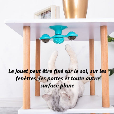 Jouet spinner chat 1 Jouet Spinner Chat: Véritable Anti-stress Pour Votre Chat