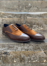 Cavani Tate Brown Shoe