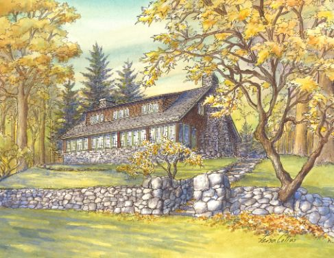 leisa-collins-art-shop - White Plains Craftsman in New Jersey - Pen and watercolor