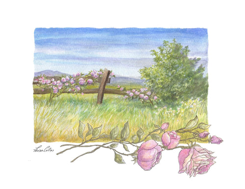 leisa-collins-art-shop - Country Scene in Summer - Pen and watercolor