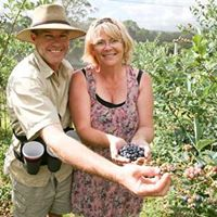 Dean and Wendy with a fresh harvest of bio-dynamic blueberries