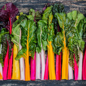 Organic Rainbow Swiss Chard Bunch x 1