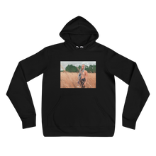 Load image into Gallery viewer, Field of Dreams - Unisex hoodie