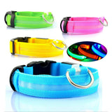 LED Pet Nylon Luminous Fluorescent Collars Night Safety Flashing Glow In The Dark - Securgadget Store