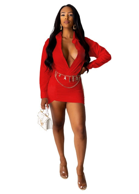 Deep V Neck Long Sleeve Bodycon Mini Dress