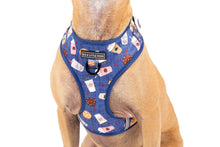Load image into Gallery viewer, Cafe O'Clock Dog Harness