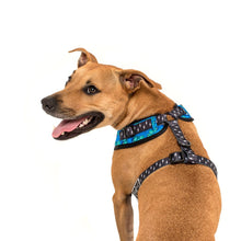Load image into Gallery viewer, Rawr Adjustable Dog Harness