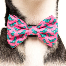Load image into Gallery viewer, Princess-asaurus Collar and Bow Tie